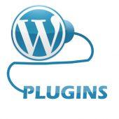 Wordpress-Plugins.jpg